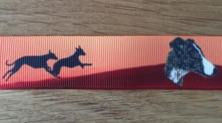 Ajani - orange Windhunde
