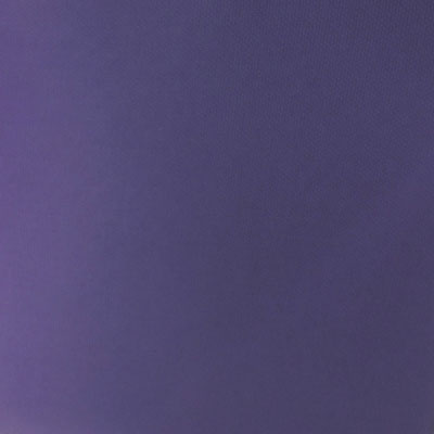 Beluga - lila nylon